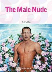 Male Nude PDF