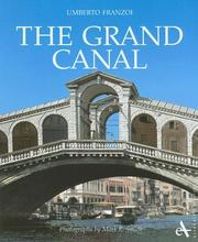 The Grand Canal by Umberto Franzoi