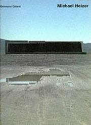 Michael Heizer by Michael Heizer