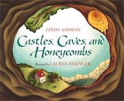 Castles, caves, and honeycombs PDF