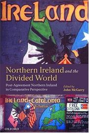 Northern Ireland and the Divided World PDF