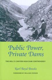 Public power, private dams PDF
