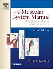 The muscular system manual by Joseph E. Muscolino