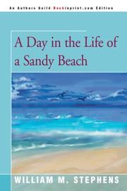 A day in the life of a sandy beach PDF