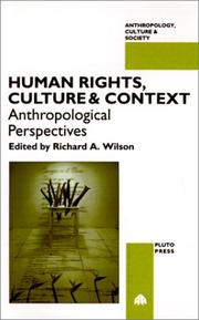 Human Rights, Culture and Context PDF