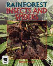 Insects and Spiders (Rainforests) PDF