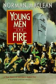 Young men & fire PDF