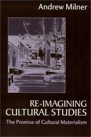 Re-imagining cultural studies by Andrew Milner