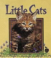 Little cats PDF