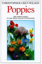 Poppies by Christopher Grey-Wilson