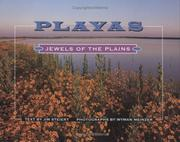 Playas by Jim Steiert