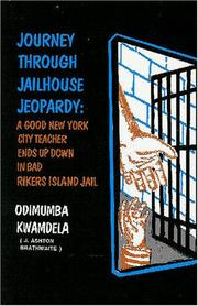 Journey through jailhouse jeopardy by Odimumba Kwamdela