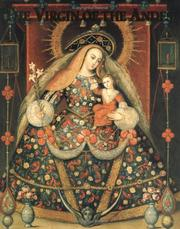 Cover of: The Virgin of the Andes by Carol Damian