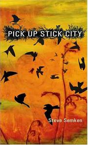 Pick up stick city by S. H. Semken