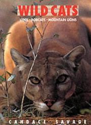 Wild Cats PDF