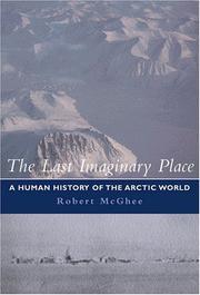 The Last Imaginary Place PDF