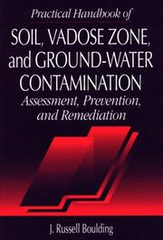 Practical handbook of soil, vadose zone, and ground-water contamination by Russell Boulding