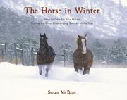 The Horse in Winter by Susan McBane