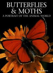 Butterflies & moths by Paul Sterry