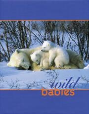 Wild Babies PDF