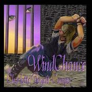 WindChance PDF