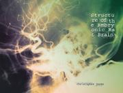 Structure of the Embryonic Rat Brain PDF