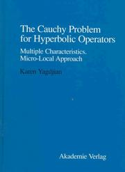 The Cauchy problem for hyperbolic operators by Karen Yagdjian