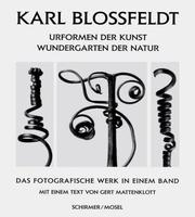 Urformen der Kunst by Karl Blossfeldt