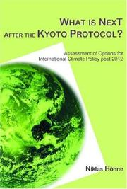 What is Next After the Kyoto Protocol PDF