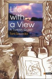 Life with a View A Turkish Quest PDF