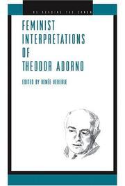 Feminist Interpretations of Theodor Adorno (Re-Reading the Canon)