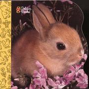 10 Little Bunnies (Little Nugget) PDF