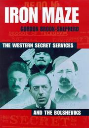 Iron Maze the Western Secret Services PDF