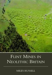 Flint Mines in Neolithic Britain PDF