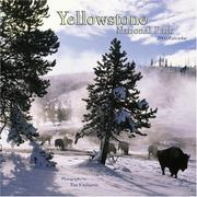 Yellowstone National Park 2006 Calendar (Regional Places Wall Calendars) by Tim Fitzharris