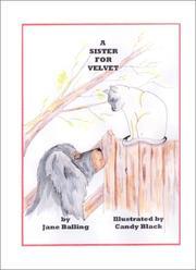 A Sister for Velvet PDF