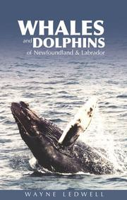 Whales and Dolphins of Newfoundland and Labrador PDF