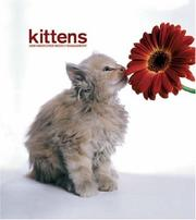 Kittens 2008 Hardcover Weekly Engagement Calendar PDF