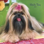 Shih Tzu 2008 Square Wall Calendar by BrownTrout Publishers