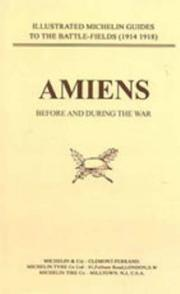 Bygone Pilgrimage. Amiens Before and During the War (Before & During) PDF