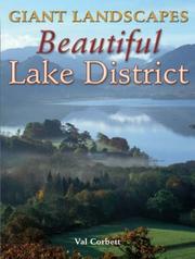Giant Landscapes Beautiful Lake District (Giant Landscapes) PDF