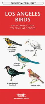 Los Angeles Birds PDF