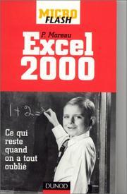 Micro flash - Excel 2000 PDF