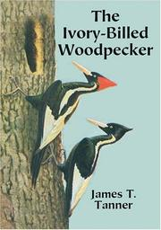 The ivory-billed woodpecker by James T. Tanner