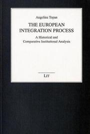 The European Integration Process PDF