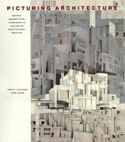 Picturing Architecture PDF