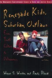 Renegade kids, suburban outlaws by Wayne S. Wooden
