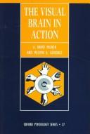 The visual brain in action by A. D. Milner