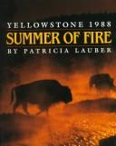 Summer of Fire by Patricia Lauber
