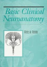 Basic clinical neuroanatomy PDF